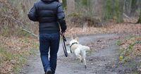 Wie handeln, wenn der Hund das Herrchen markiert?