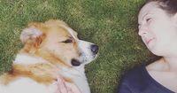 Hunde können tatsächlich Emotionen von Menschen erkennen