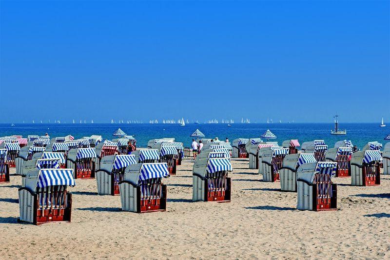 Ungebetener Gast am Strand an der Ostsee