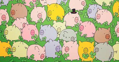 Schweinisches Rätsel: Wer kann es auflösen?