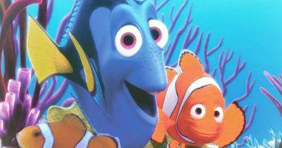 """Vor Kinostart: Warum """"Findet Dorie"""" die Tropenfische bedroht"""
