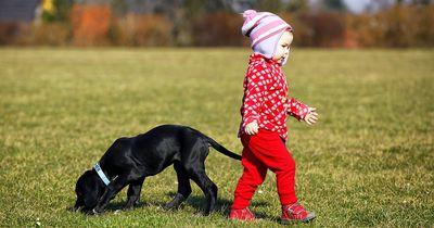 Ab wann sollte ein Kind ein Haustier haben dürfen?