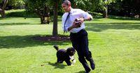Damit schafft Barack Obamas Hund Negativ-Schlagzeilen