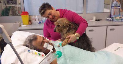 Dieser Komapatient wird mit seinem Hund wiedervereint