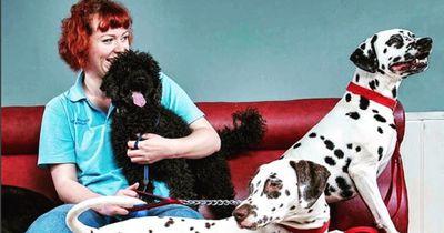 Diese Tierärztin versorgt Hunde von Obdachlosen kostenlos