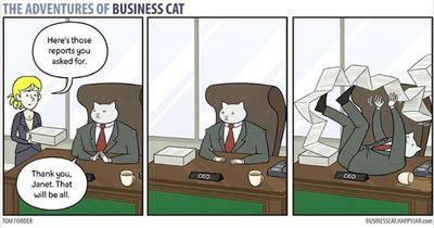 Wenn dein Chef eine Katze wäre...