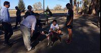 High-School Cross-Country Team nimmt obdachlose Hunde mit auf Laufrunde