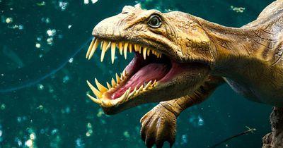 Stimmt das, was wir über Dinosaurier wissen?