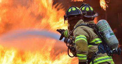 Um einen Hund zu retten, gibt dieser Feuerwehrmann alles