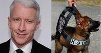 Anderson Cooper tut das Unfassbare