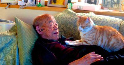 Als dieser kranke Großvater eine Katze bekommt, ändert sich alles