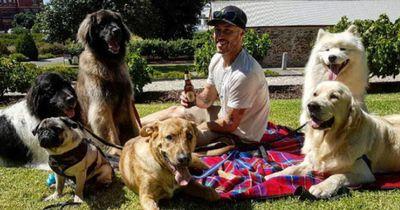 Dieser Australier will jeden Hund auf der Welt retten