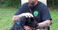 Dieser Hund leistet Erstaunliches für Veteranen