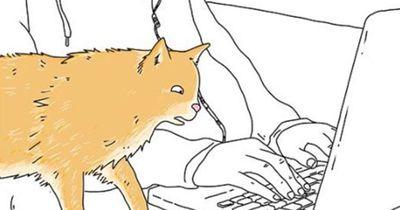 Witzige Karikaturen: Wenn Tiere reden könnten