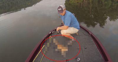 Diese Fischer trauen ihren Augen nicht