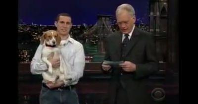 """Als dieser Hund """"stirbt"""", feiert das ganze Publikum"""