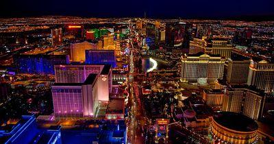 Las Vegas hat ein ziemlich flauschiges Problem