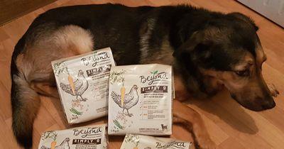 Dieses Futter ist für deinen Hund nicht nur unbedenklich, sondern auch gesund!
