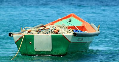 Hai springt in Boot und verletzt Fischer