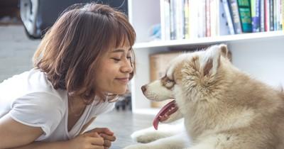 Das sind die beliebtesten (und schönsten) Hundenamen Deutschlands!