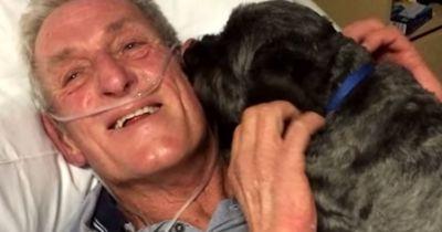 Er liegt im Koma, als sein Hund ihn besucht...