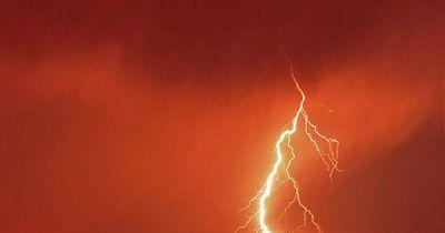 Werden Giraffen öfter vom Blitz getroffen als andere Tiere?