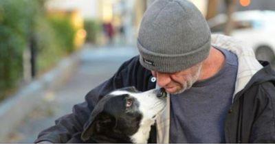 Ein Obdachloser verliert seinen Hund