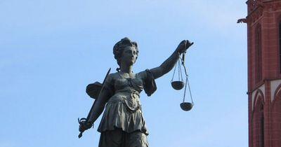 Papagei wird Zeuge vor Gericht