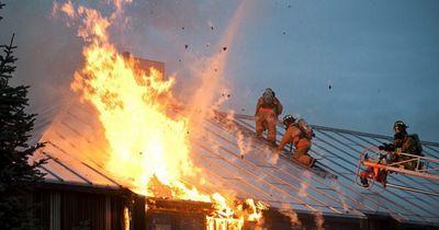 Zwei Hunde waren noch in dem brennenden Haus