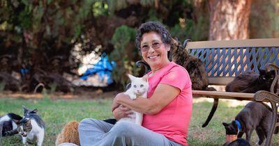 Die ultimative Katzenfrau: Diese Dame hat 1.100 Katzen!