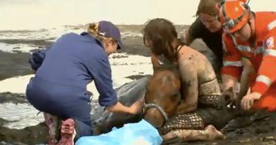 Ihr Pferd drohte im Treibsand zu versinken