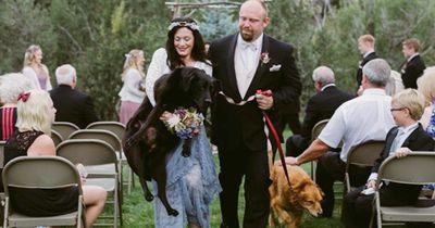 Ihr Hund ist sterbenskrank - doch ohne ihn will sie nicht heiraten