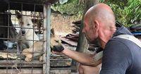 Er rettete über 300 Hunde vor dem sicheren Tod